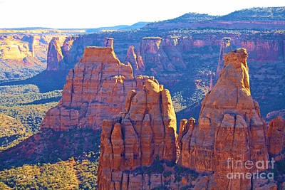 Photograph - Colorado National Monument by Roena King