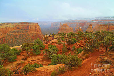 Colorado Natl Monument Snow Coming Down The Canyon Art Print