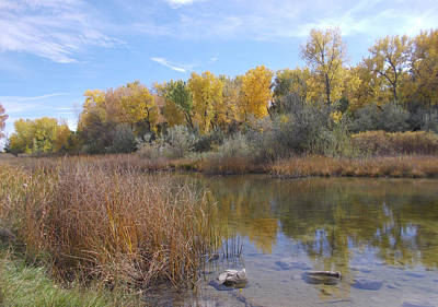Photograph - Colorado Pond by Shere Crossman