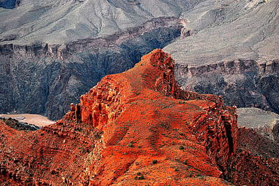 Canyon Photograph - Colorado River Behind The Red Cliffs by HQ Photo
