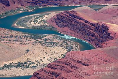 Photograph - Colorado River Natural Abstract by Debra Thompson