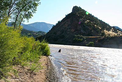 Photograph - Colorado River Shoreline by Susan Herber