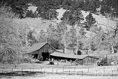 Photograph - Colorado Rocky Mountain Barn Bw by James BO Insogna