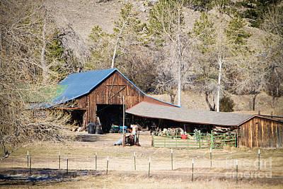 Photograph - Colorado Rocky Mountain Barn by James BO Insogna