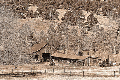 Photograph - Colorado Rocky Mountain Barn Sepia by James BO Insogna