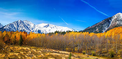 Corporate Art Photograph - Colorado Rocky Mountain Independence Pass Autumn Pano 1 by James BO  Insogna