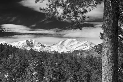 Winter Trees Photograph - Colorado Rocky Mountain View Black And White by James BO  Insogna