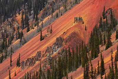 Anvil Photograph - Colorado, San Juan Mountains, Trees by David Wall