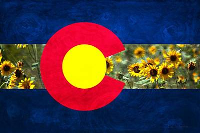 Colorado State Flag Photograph - Colorado State Flag In Van Gogh by Barbara Chichester
