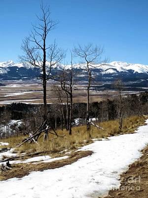 Photograph - Colorado Trail 1 by Claudette Bujold-Poirier