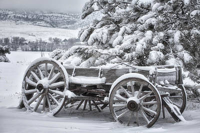 Photograph - Colorado Wagon by Darren  White