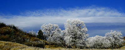 Photograph - Colorado's First Day Of Winter by Alexandra  Rampolla