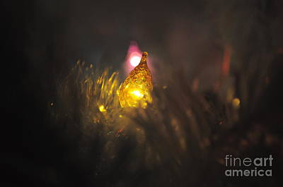 Photograph - Colored Christmas by Bridgette Gomes