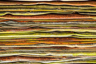 Roofing Tin Photograph - Colored Layers by Debbie Green