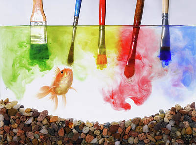 Paint Brushes Wall Art - Photograph - Colored Lunch by Sergio Rapagn?