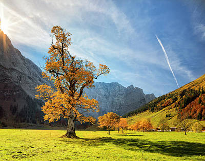 Colorful Autumn At Ahornboden In Art Print by Dietermeyrl