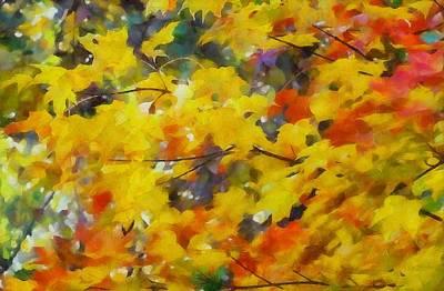 Colorful Autumn Foliage Art Print
