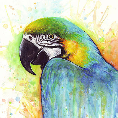 Parrots Wall Art - Painting - Macaw Watercolor by Olga Shvartsur