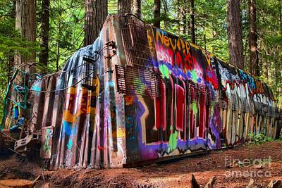 Photograph - Colorful Box Car In The Forest by Adam Jewell