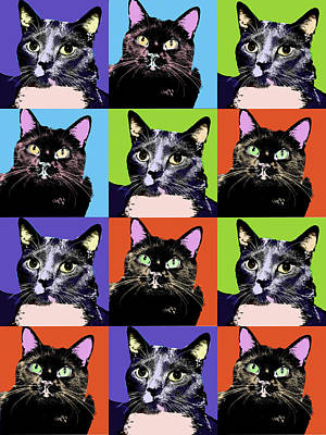 Digital Art - Colorful Cat Pop Art by Susan Stone