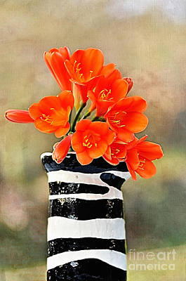Clivia Flowers Photograph - Colorful Clivias by Kaye Menner