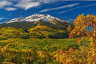 Photograph - Colorful Colorado Aspens by Willie Harper