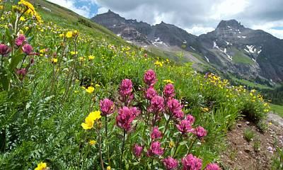Photograph - Colorful Colorado Summer Landscape by Cascade Colors