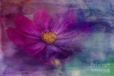 Colorful Cosmos Art Print