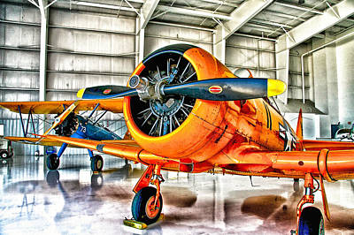 Warbird Mixed Media - Colorful Cousins by Chas Burnam