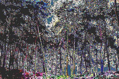 Amazing Stories Mixed Media - Colorful Digitally Painted Tree Spectrum by Navin Joshi