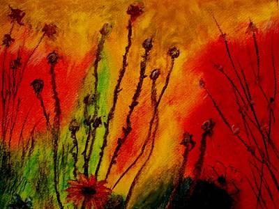 Colorful Dreams Art Print