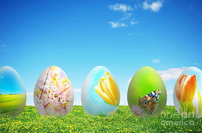 Decorative Photograph - Colorful Easter Eggs In Nature by Michal Bednarek