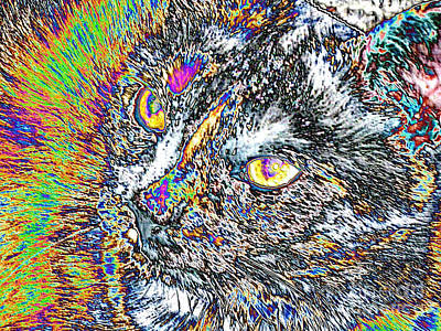 Digital Art - Colorful Face Of Cat by Oksana Semenchenko