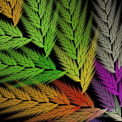 Digital Art - Colorful Feather Fern - Abstract - Fractal Art - Square - 1 Tl by Andee Design
