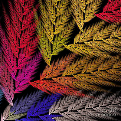 Digital Art - Colorful Feather Fern - Abstract - Fractal Art - Square - 2 Tr by Andee Design