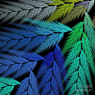 Digital Art - Colorful Feather Fern - Abstract - Fractal Art - Square - 3 Ll by Andee Design