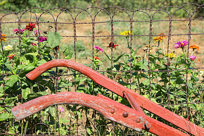 Photograph - Colorful Fence Row by Deb Buchanan