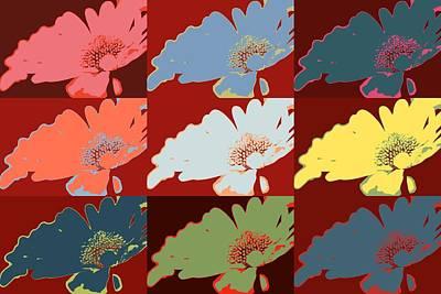 Colorful Flowers Daisy Original