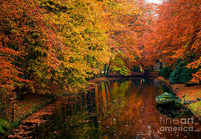 Art Print featuring the photograph Colorful Forest by Boon Mee