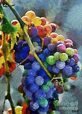 Fruits Mixed Media - Colorful Grapes by Dragica  Micki Fortuna