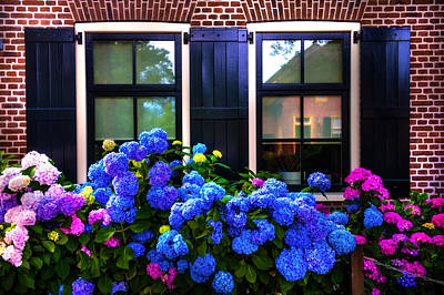 Purple Hydrangeas Photograph - Colorful Hydrangea At The Windows. Giethoorn. Netherlands by Jenny Rainbow