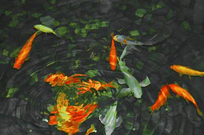 Koi Digital Art - Colorful Koi In Pond by Jill Schmidt