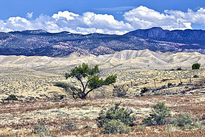 Photograph - Colorful Landscape Montrose Colorado by James Steele