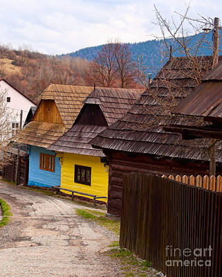 Photograph - Colorful Log Homes by Les Palenik