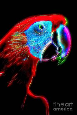 Photograph - Colorful Macaw by Patrick Witz