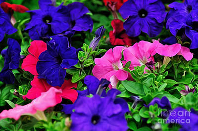 Multicolored Digital Art - Colorful Morning Glory by Kaye Menner