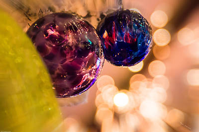 Photograph - Colorful Ornaments by Mick Anderson