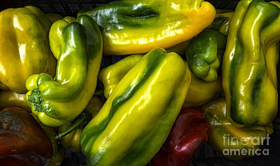Colorful Peppers Art Print by Frank Bach