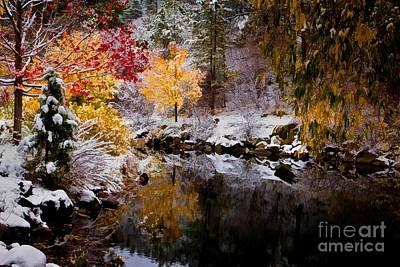 Colorful Pond Art Print