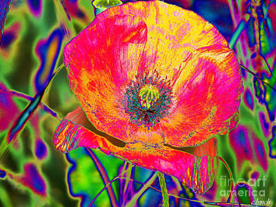 Abstract Forms Digital Art - Colorful Poppy by Carol Lynch